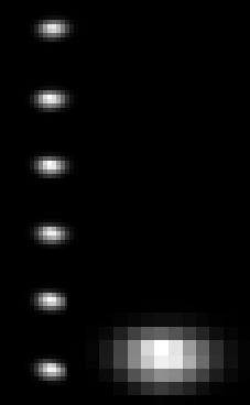D-изображения оптического волокна, состоящего из нескольких 100мкм-волокон, полученные с помощью M833 (детектор iVac Andor CCD, размер пикселя 16x16 мкм)