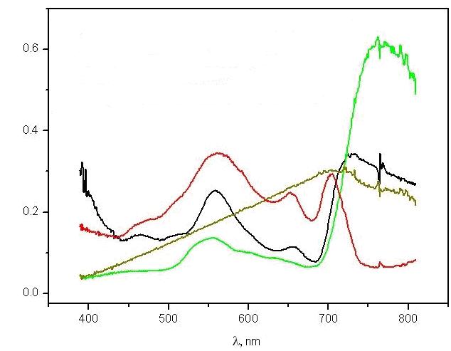 нормированные спектры коэффициента яркости объектов окружающей среды *:черный – ряска Цимлянского водохранилища, зеленый – зеленый камыш, желто-зеленый – сухой желтый камыш, красный – искусственная водная экосистема
